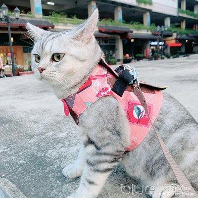 遛貓繩牽引繩胸背帶防掙脫背心式溜貓衣貓咪專用寵物貓咪遛貓神器