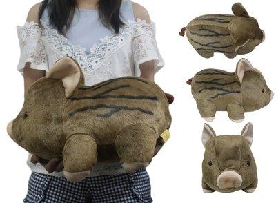 【高弟街百貨】12吋小山豬娃娃 小山豬...