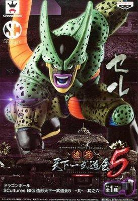 日本正版景品 七龍珠 SCultures BIG 造型天下第一武道會5 共 其之六 賽魯 西魯 第二形態 公仔 日本代購