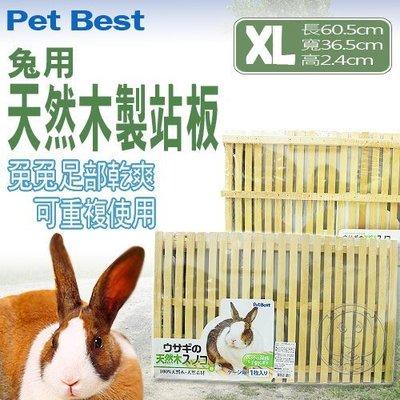 【🐱🐶培菓寵物48H出貨🐰🐹】Pet Best》R-A124 天然木製站板-大(XL) 特價199元