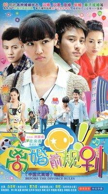 都市情感電視劇 離婚前規則 DVD碟片光盤白百何賈乃亮鄭凱