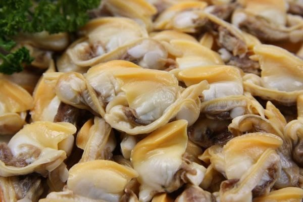 【萬象極品】海瓜子肉/ 約500g/包