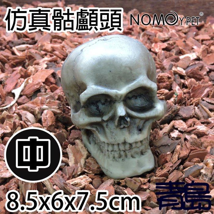 Y。。。青島水族。。。NS-103中國NOMO諾摩-逼真骷髏頭 人頭骨頭 骷顱頭 水族裝飾 躲藏 造景蜘蛛蠍蛇蜥蜴==中