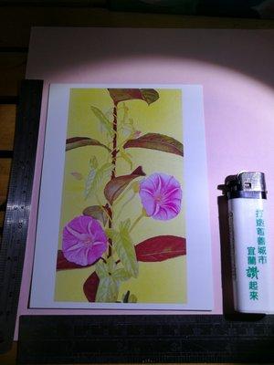 銘馨易拍重生網 108PP07  宮山 廣明 賢木 未使用空白藝術卡 明信片 保存如圖