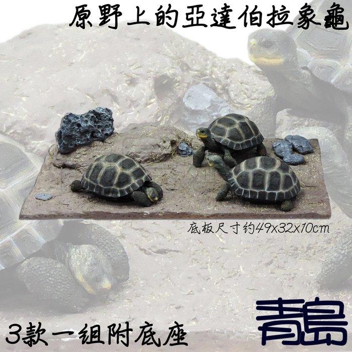 YU。。。青島水族。。。TQ-13手工原創 仿真陸龜模型 3D擬真模型 陸龜公仔==亞達伯拉象龜3款一組