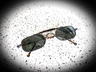 La Eyeworks 太陽眼鏡️