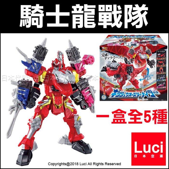一盒全5種 騎士龍戰隊 龍合體 龍裝者 騎士龍王 MINIPLA 01 盒玩 BANDAI 萬代 LUC日本代購