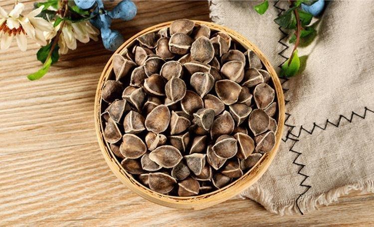現貨!兩件免運!精選印度 辣木籽 營養豐富 辣木子 營養之母 小顆粒 精挑野生 初級農產品500g