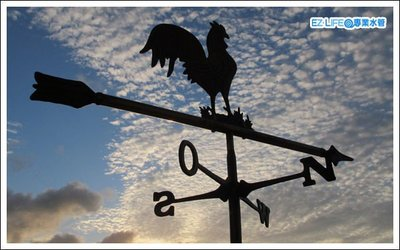 【EZ LIFE@專業水管】園藝設計專用 黃銅公雞風向標 高75公分 寬58公分 造景庭園莊園復古藝術品 屋頂裝飾