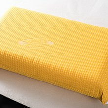 義大利原裝黃豆枕(平面)