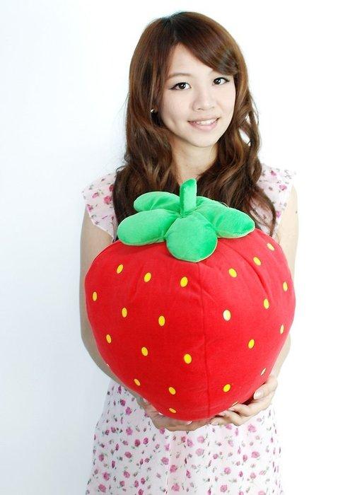 娃娃夢幻樂園~可愛草莓抱枕~立體水果抱枕~紅色草莓~草莓造型抱枕/靠枕~全省宅配