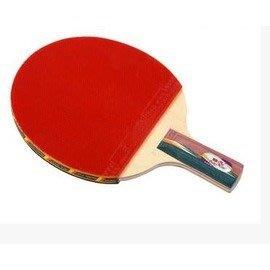 【乒乓球拍-橫直拍-四星級-雙面反膠830-1套/組】適合近臺快攻打法(不送球)-56014