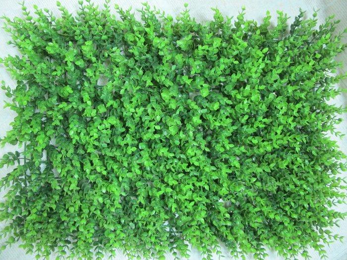 【樂提小舖】02908 小尤加利草皮 60x40cm 人造草皮 假草皮 裝飾草皮 遊戲區草皮 佈置草皮 仿真草皮 戶外草