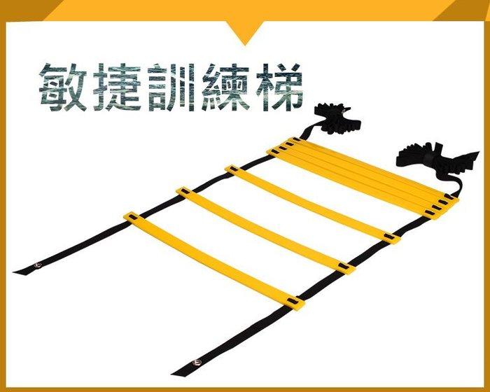 運動訓練輔助器材 6公尺 敏捷訓練梯 敏捷梯 繩梯 協調性訓練  足球訓練 拳擊 速度訓練 核心【RF12】