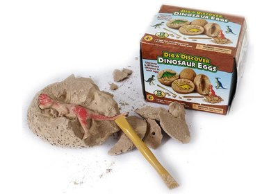 DIY 小號 恐龍挖掘考古化石 恐龍蛋 仿真 化石 恐龍  益智 侏儸紀公園 暴龍 劍龍 梁龍 台南市