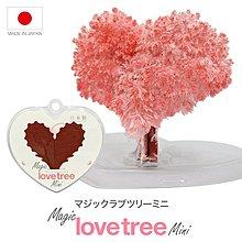 日本 マジックラブツリー ミニー    Magic Love Tree Mini 包平郵費