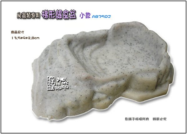 【魚舖子水族】台製^^爬蟲類專用梯形餵食盆 (寵物水盆) 小款~便宜賣