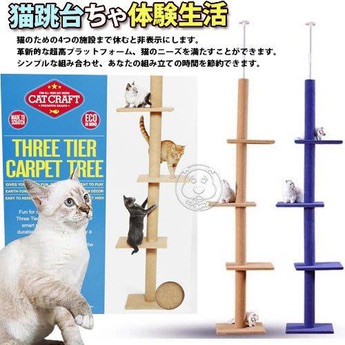 【??培菓寵物48H出貨??】dyy》超長大型貓爬樹3way頂天豪華貓跳台 特價899元