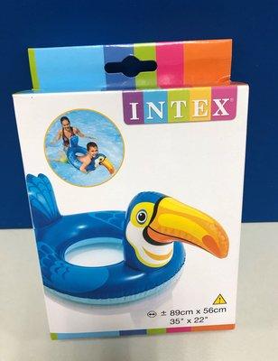 INTEX 動物泳圈 (大嘴鳥) #58221NP 新北市