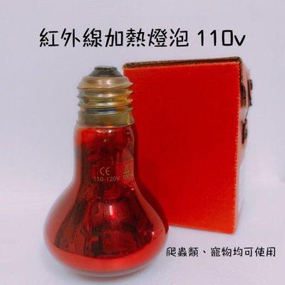 現貨 紅外線加熱燈 烏龜加熱燈 紅外線燈泡 寵物加熱燈