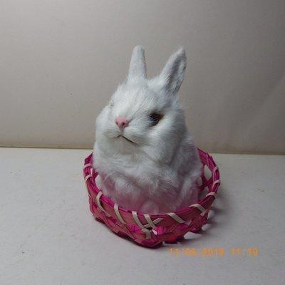 紫晶宮***單隻兔子高11.5cm白色竹籃***品質保證價格便宜