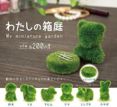 【一手動漫】日本正版 YELL 扭蛋 轉蛋 我的箱庭 迷你動物植栽造景 盆栽 一套全6種