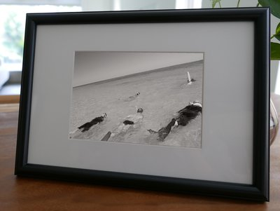 聚鯨Cetacea﹡Art【KLFZ-1628】diving潛水/seaside海邊 畫框相框