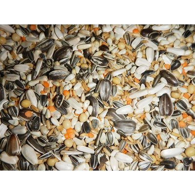鸚鵡飼料-基本款/無添加高梁不浪費/中型,大型鸚鵡/蜜袋鼯/松鼠/倉鼠/小太陽,金太陽,月輪,賈丁,小金剛,灰鸚等/鳥飼料/倉鼠飼料