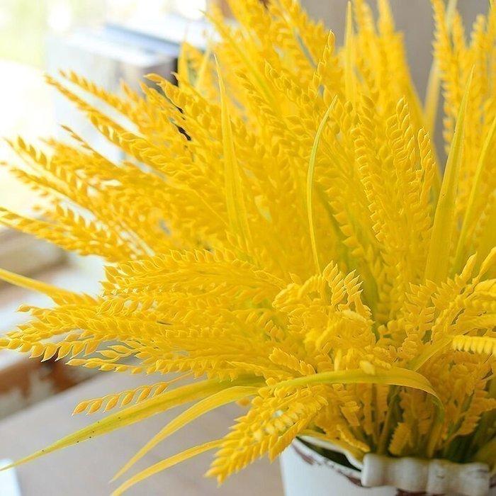 爆款--麥穗稻穗小麥子麥穗仿真植物花卉裝飾 拍照攝影道具花束軟裝飾品#擺件#創意#逼真#簡約