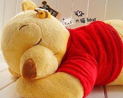 【易發生活館】迪士尼 睡姿維尼熊與蜜蜂趴趴熊抱枕 毛絨玩具/午睡枕 JPA029 大號