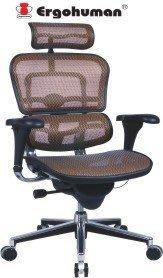 巧迪 Ergohuman111 人體工學椅|電腦網椅(特價9990元)