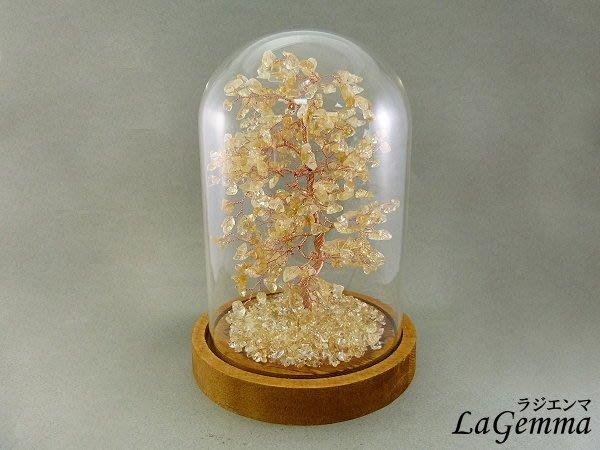 ☆寶峻晶石☆新貨到~簡約現代風 玻璃罩 黃水晶發財樹 生命樹 水晶 家飾