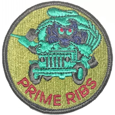 美軍公發 USAF 空軍 Prime RIBS Readiness In Base Services 臂章 綠色 全新