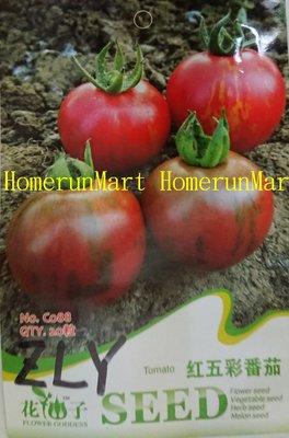 ZLY紅五彩番茄種子買十送一 黃壽桃番茄 黃珍珠番茄 紅壽桃 紫五彩番茄 綠瑪瑙番茄 黃洋梨番茄 綠五彩 甜橙番茄種子