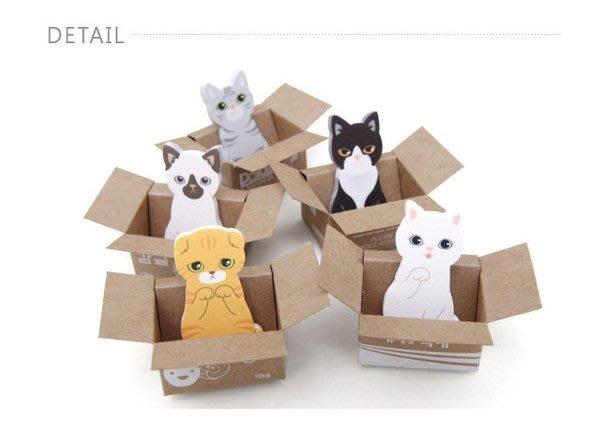 [溫馨小舖]31.小貓便利貼 可愛紙箱貓咪 N次貼 便利貼 小貓便條紙 喵星人 紙箱貓咪N次貼