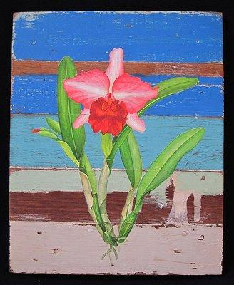 西洋蘭花圖鑑畫工筆畫似水彩畫又像油畫的原木製掛畫掛飾擺飾峇里島巴里島泰國風純手工藝術品C【心生活美學】
