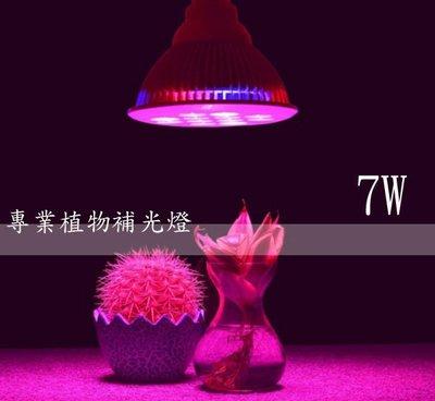LED 7W 植物燈 高功率par燈 水草燈 多肉 莖葉蔬菜 開花植物 室內栽培 水耕 園藝 E27頭