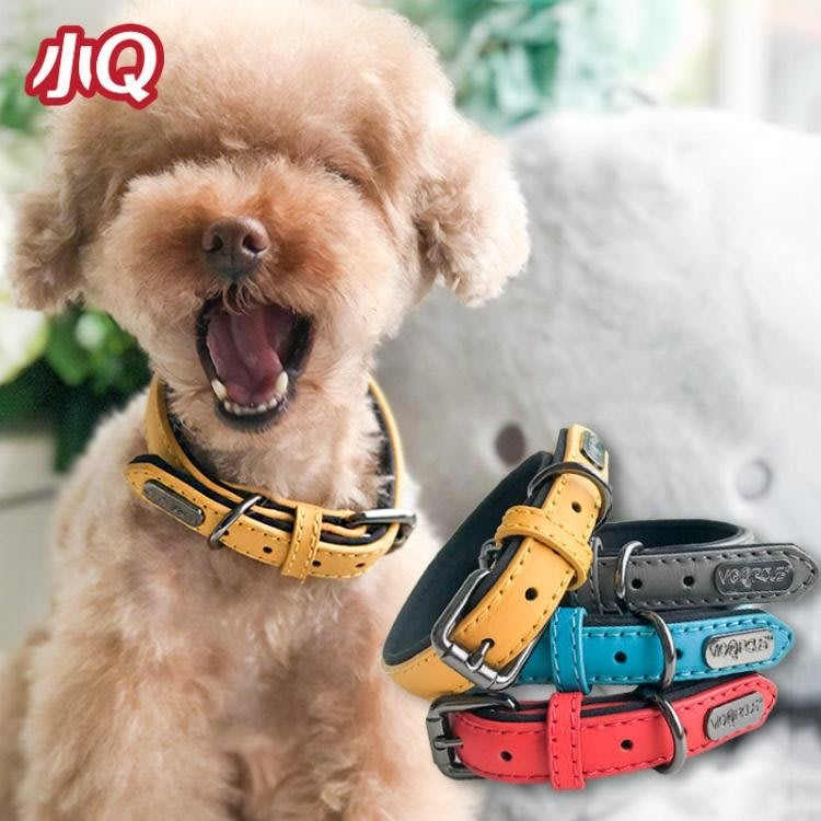 DIRECTIONS寵物狗狗項圈 泰迪項圈脖圈 精致賣萌