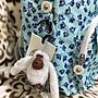 💖《現貨實拍》☆【◎╮專櫃正品 Kipling 清新淺藍小花兒 掀蓋 隔層多 容量大 後背包╭◎ 】