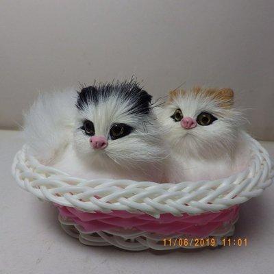 紫晶宮***情侶貓咪 毛絨玩具仿真寵物玩偶 高11.5cm竹籃***品質保證價格便宜