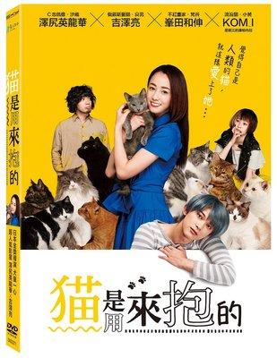 合友唱片 面交 自取 貓是用來抱的 Cat in Their Arms DVD