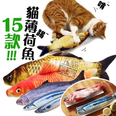 貓紓壓【貓薄荷魚抱枕40cm】貓草包 貓草魚 貓薄荷 貓草 貓玩具 貓草魚玩具 貓咪玩具 貓薄荷玩具 寵物玩具 五貓見客
