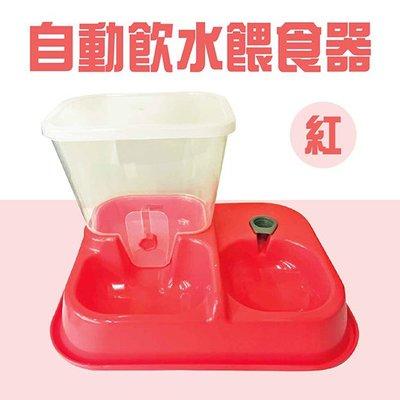 ✪第一便宜✪ GY自動飲水餵食器 紅/粉/米/黃/綠/藍 六款均一價