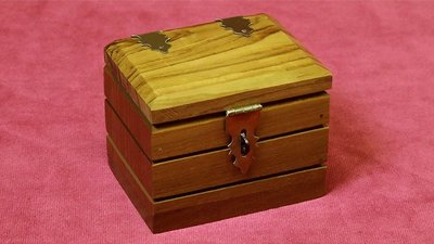 [魔術魂道具Shop]看看這盒子~~Watch Box by Mr. Magic
