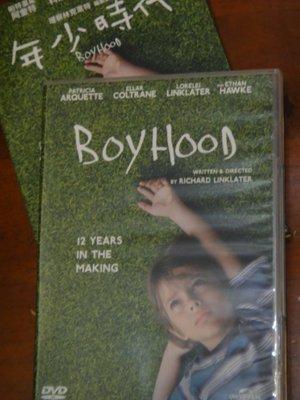 BOYHOOD 年少時代 理察林克雷特(愛在黎明破曉前) 伊森霍克 派翠西亞艾奎特