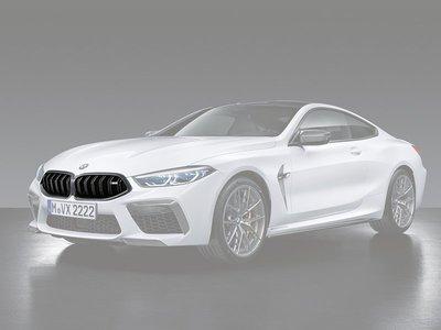 【樂駒】BMW 8er M8 M Performance 原廠 Carbon 碳纖維 空力 輕量化 黑鼻頭 水箱罩