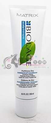 便宜生活館【瞬間護髮】美傑仕 頭皮髮療系列-抗屑髮乳250ml 針對頭皮屑專用