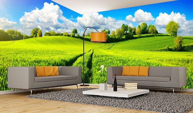 客製化壁貼 店面保障 編號F-694 藍天草地 壁紙 牆貼 牆紙 壁畫 背景牆 星瑞 shing ruei