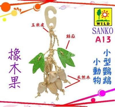 ☆汪喵小舖2店☆ 日本 WILD SANKO 鳥用玩具堅果-橡木果 A13 // 小動物也適用