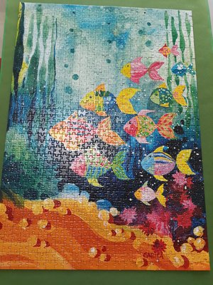 已拼好之拼圖-【HEYE PUZZLE-SHOAL OF FISH】1000片拼圖
